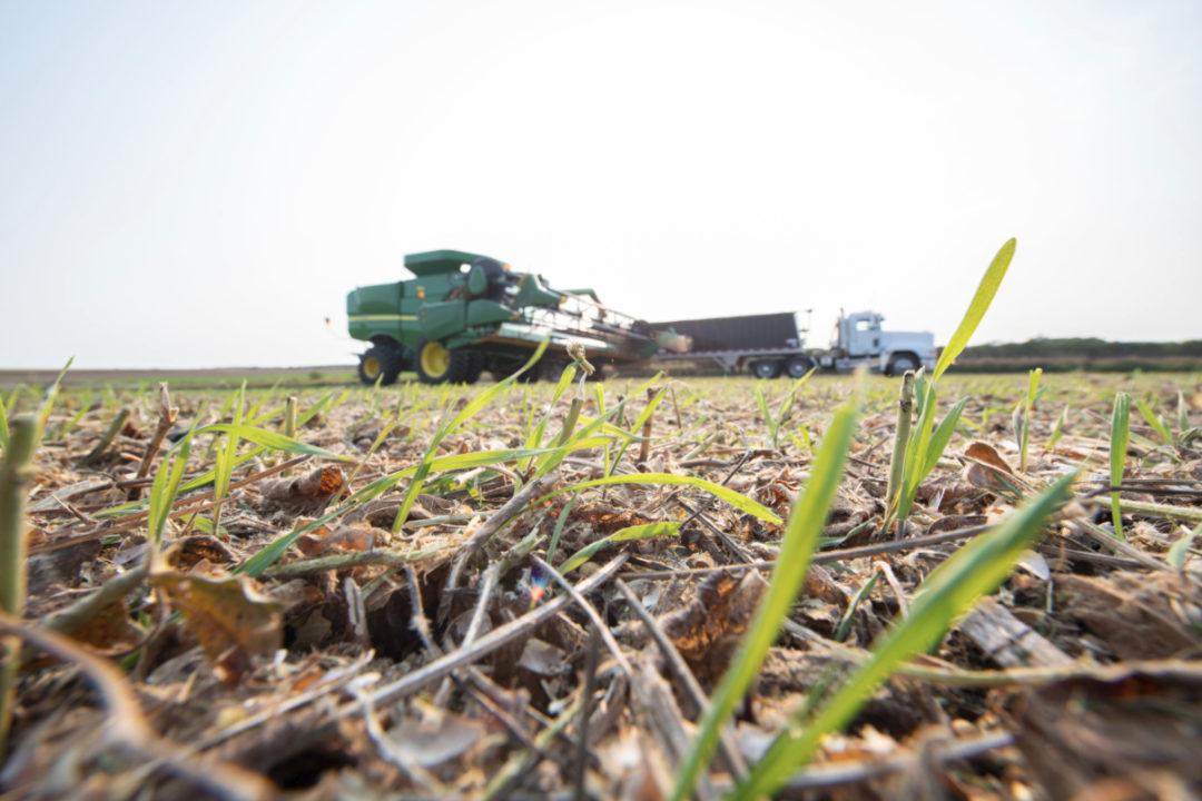 Cargill regenerative agriculture