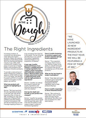 Lesaffre ezine rightingredients jul19