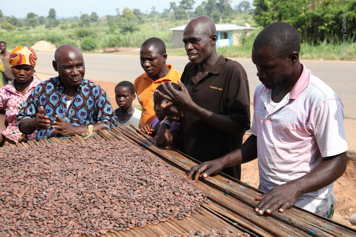 BarryCallebaut_SustainableChocolate.jpg