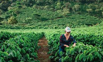 Starbucks_farmer