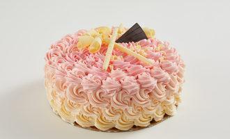 Barrycallebaut cakechocolate