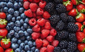 Alwaysfreshfarms berries