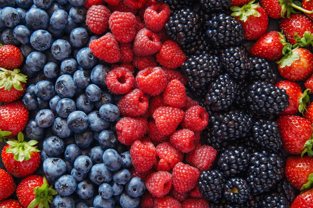 AlwaysFreshFarms_Berries